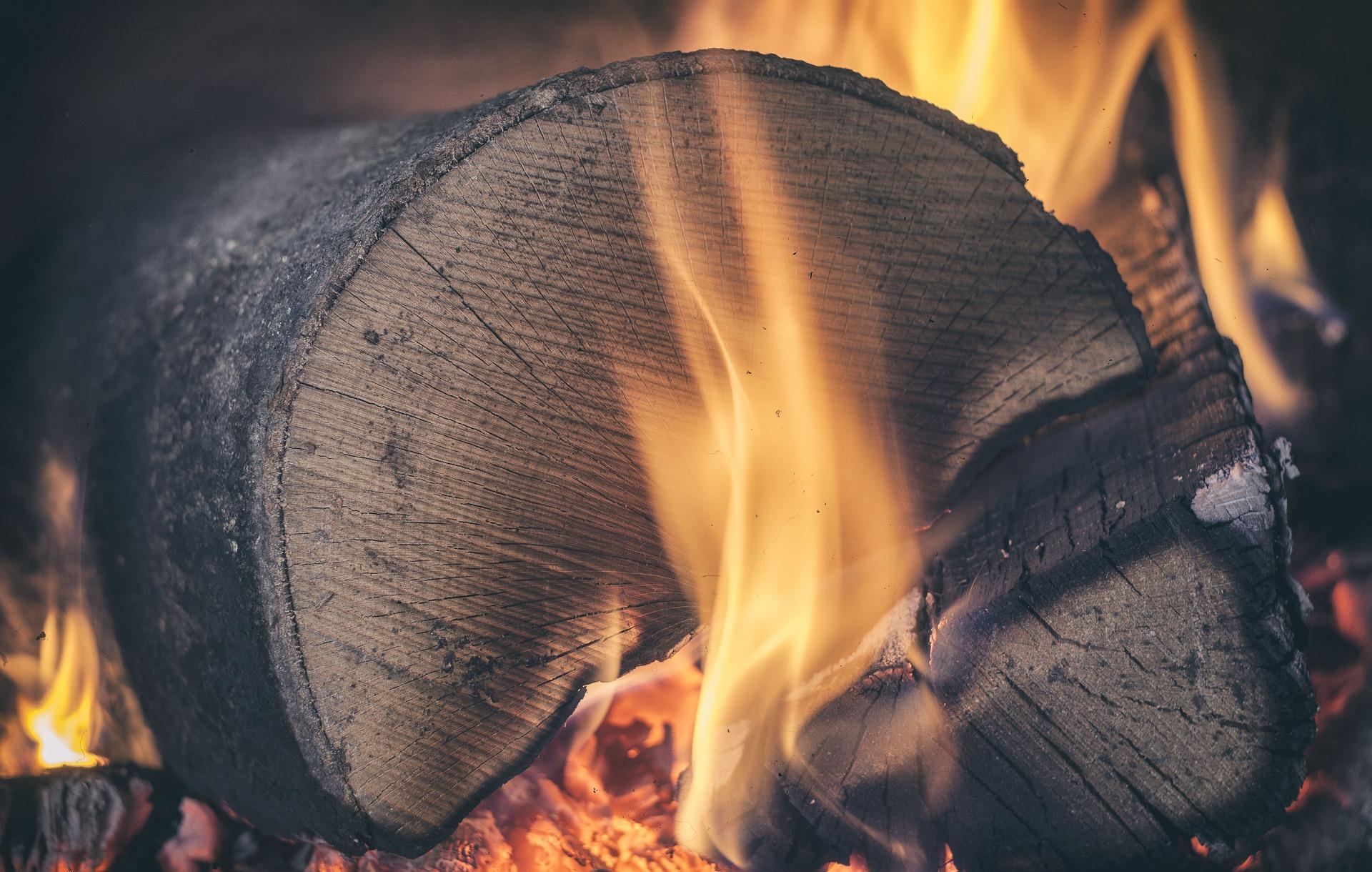 Jetzt Brennholz einlagern auf brennholz-24.de